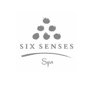 <span>SIX SENSES SPA</span><i>→</i>